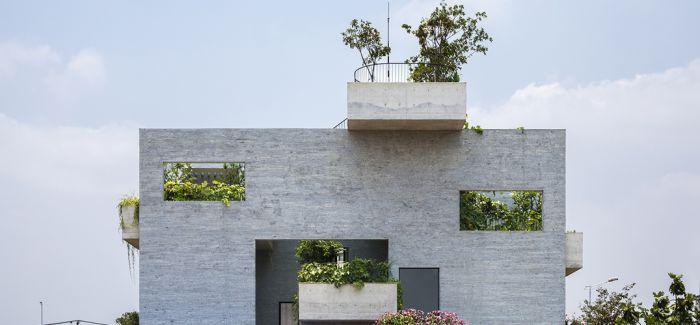 垂直花园完美植入越南binh house