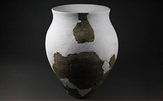 2016年度全国十大考古新发现项目扫描