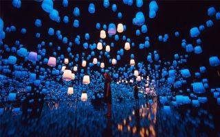 teamLab将强势登陆深圳 以数位艺术打造未来游乐园