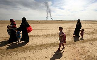 伊拉克军队夺回教科文组织文化遗址哈特拉古城