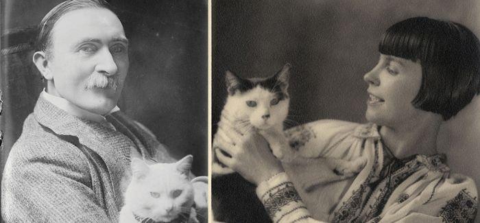 这些猫和他们相处以后 似乎也添加了一些文艺术气息
