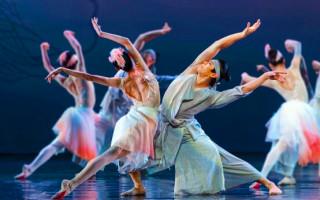 原创舞剧《朱鹮》获得国家艺术基金滚动资助