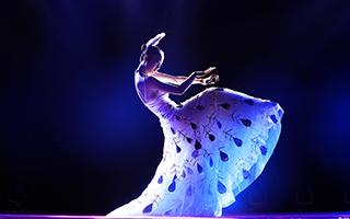 """杨丽萍现身广州: """"舞蹈是一种精神的寄托"""""""