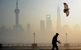中国当代艺术中心会是上海吗?