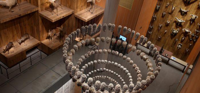 国际博物馆日上海的这些馆免费开放