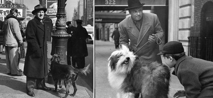 1944年在纽约街头遛狗