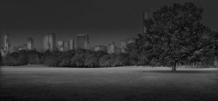 纽约中央公园 寂静深夜