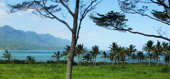 还地于树的艺术行动 探索台湾自然风景
