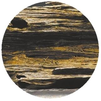 浸满思念的那一轮月——郑春辉木雕印象