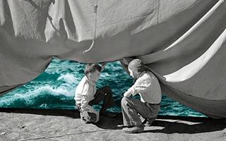 复古黑白照片与现代自然图案完美融合