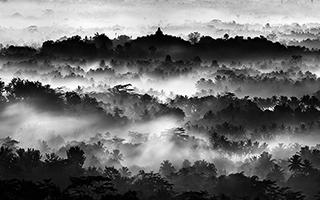 向世界展示亚洲自然之美