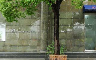 走进黄宾虹当代艺术展 寻找东方审美的当代涵义