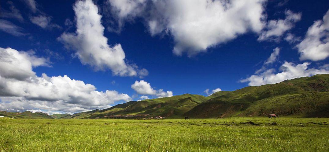 壁纸 草原 风景 桌面 1076_500