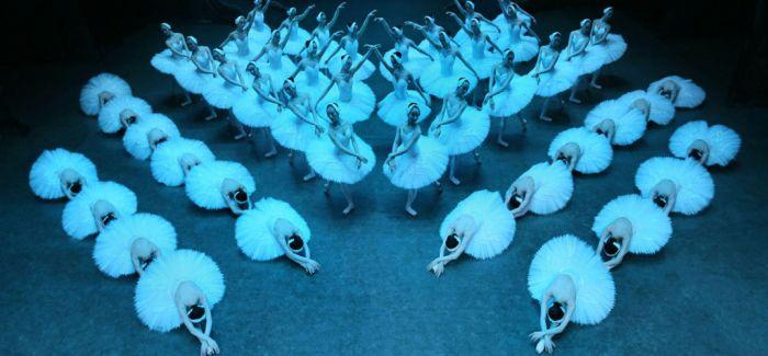 """上海的""""小天鹅""""即将赴喀什噶尔"""