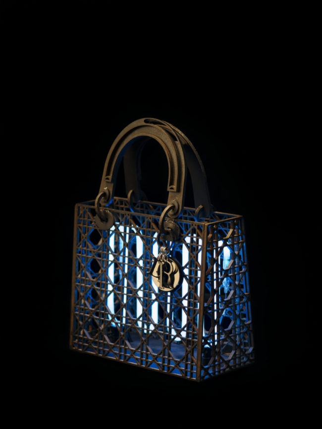 thefemin-lady-dior-as-seen-by-29-650x867