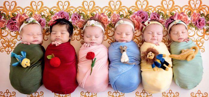 当你一次性要给六个小婴儿拍照的时候