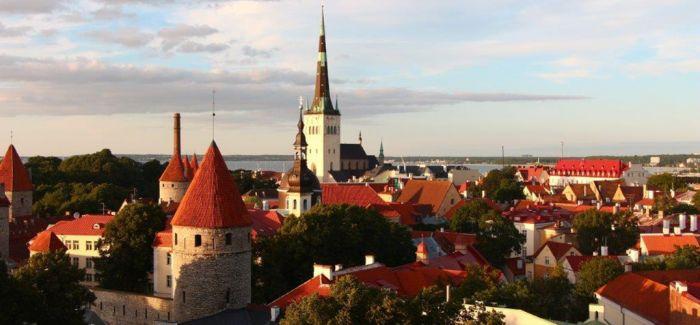 塔林的老城 波罗的海 北欧的菜
