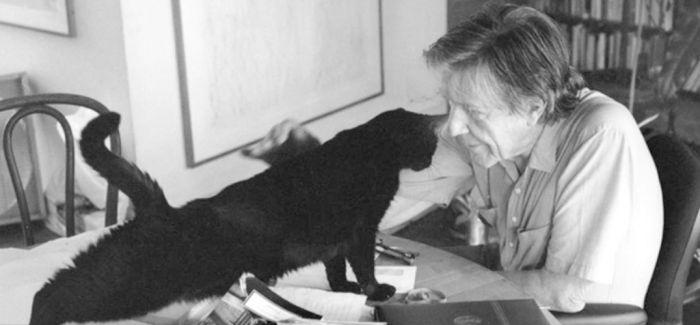 这几个成功的艺术家 背后都有一个默默无闻的猫主子