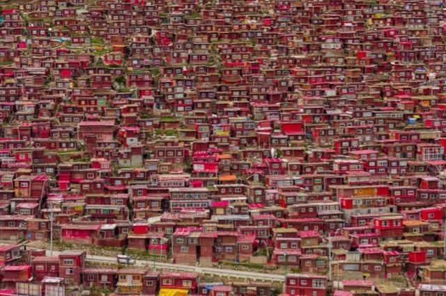 登峰造极摄影 国家地理8月精选照片赏析