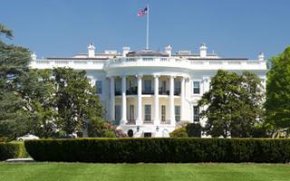 白宫艺术与人文委员会成员集体辞职