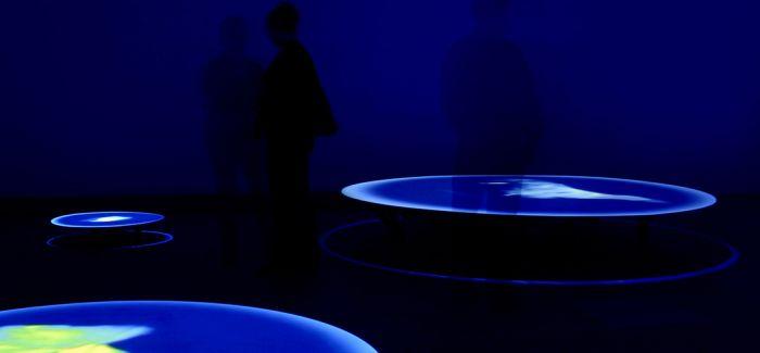 上海当代艺术市场推进跨学科 跨领域展览