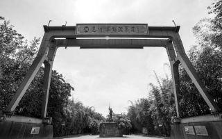 安仁古镇中的双年展