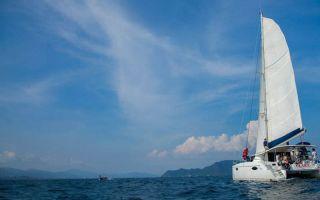 逐浪东海 诺莱仕双体帆船对抗表演赛在舟山开幕