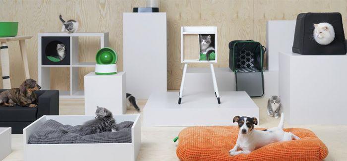 """宠物也有""""宜家风""""家具了"""