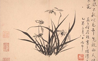 苏州博物馆藏扬州八怪与海上画派合璧展