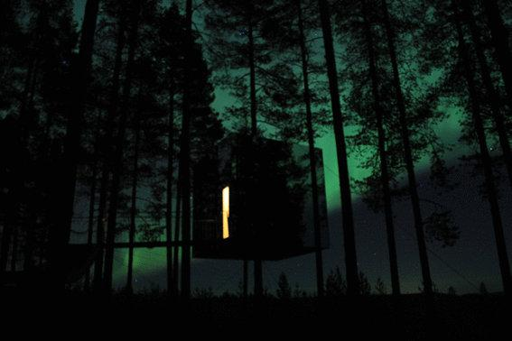 adaymag-the-treehotel-in-harads-sweden-like-something-out-of-a-fairytale-02