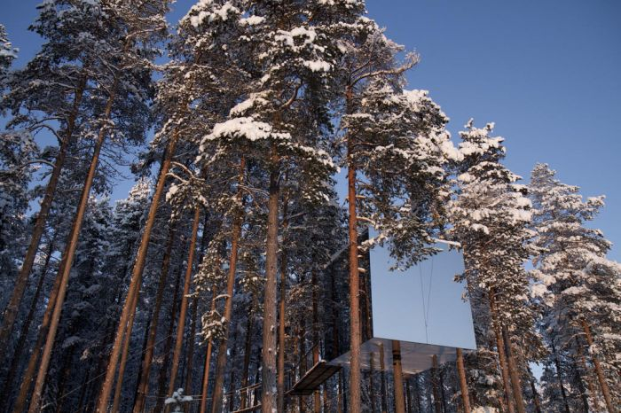 adaymag-the-treehotel-in-harads-sweden-like-something-out-of-a-fairytale-07
