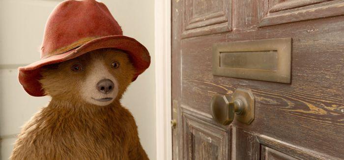 最可爱的那只熊回来了