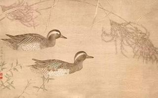 入冬时分 故宫却响起四季的鸟鸣