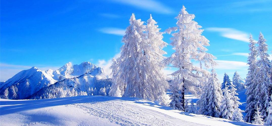冬天到了 我们一起去看雪吧