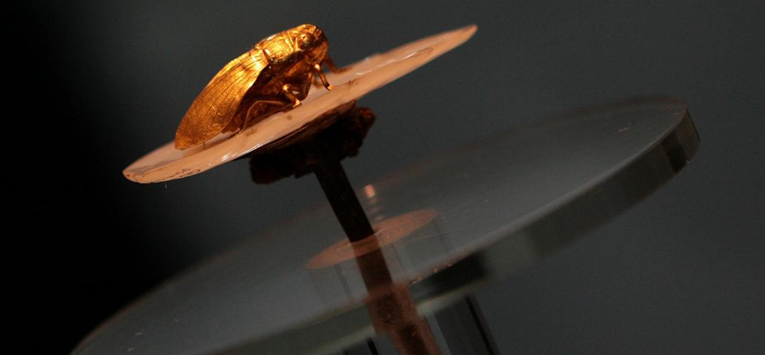 中国文物热离不开中国爱国收藏家的追捧