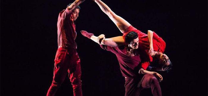 阿岱舞蹈团:极具生命力的舞蹈表演
