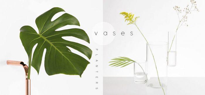 设计精妙的植物容器