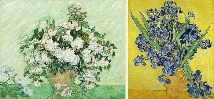 从梵高自杀前的四幅花卉 你看到了什么