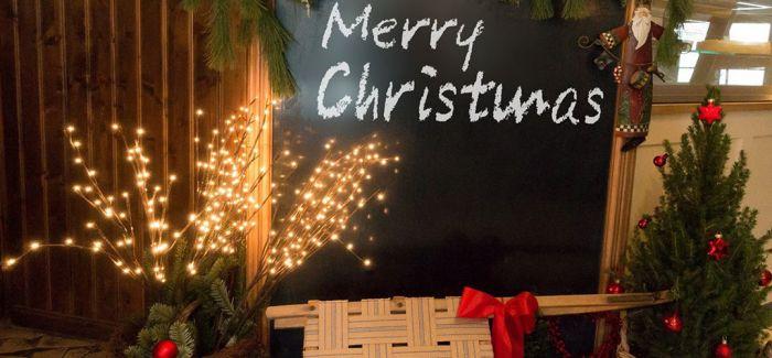 """准妈妈的圣诞""""礼物"""""""