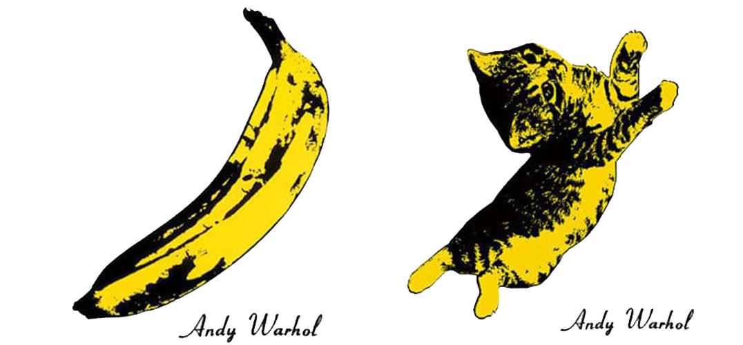 当猫咪跃然于专辑封面