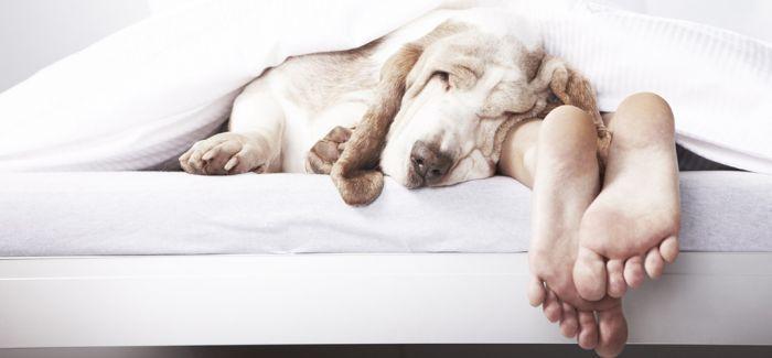 为睡眠争取宝贵的时间