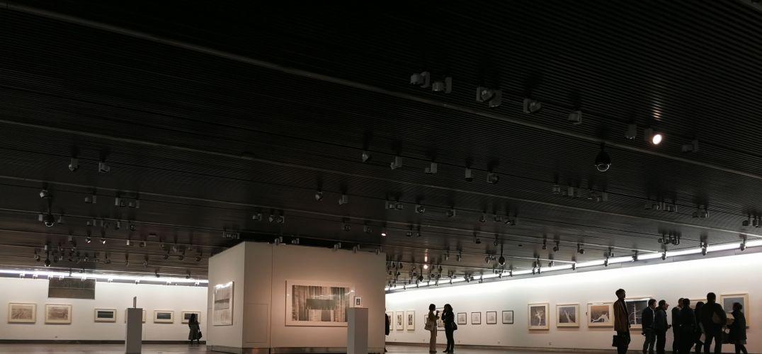 水印版画创作研修班 作品文献展在江苏省美术馆开展