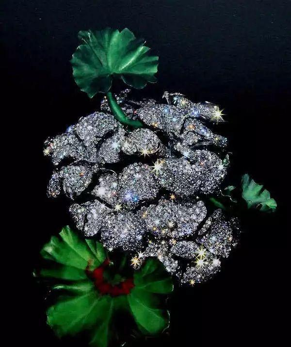 宝石的意义:总有星星为你璀璨,会跳动的高贵的心