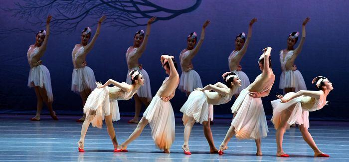 舞剧《朱鹮》:诉说人类与生灵休戚与共的同命关系