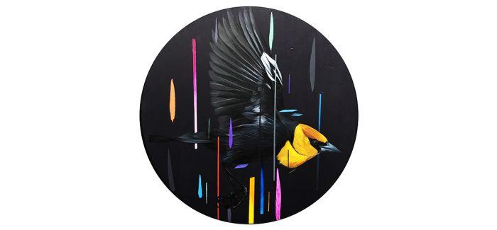 一位艺术家的飞鸟集