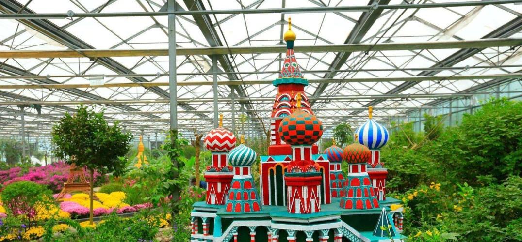 魔比斯花园|冬天带宝宝逛神秘的魔法花园吧