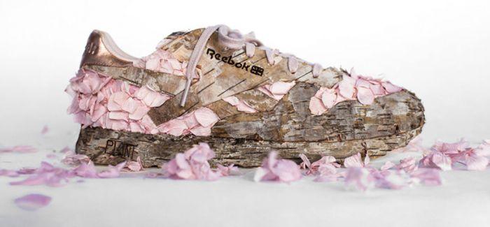 用花瓣和树皮为运动鞋改头换面