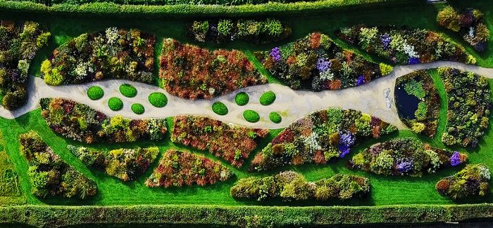 亲爱的 我们建一座印象派花园如何