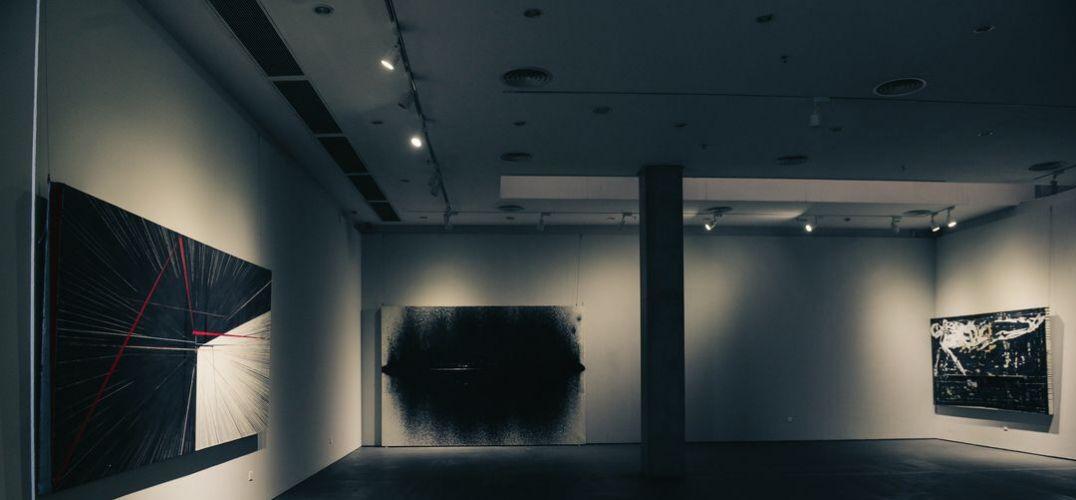 唐宋杨宽张岚芊当代艺术展在罗湖美术馆成功开幕