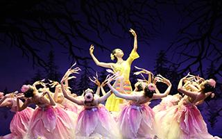 芭蕾 舞出中国力量